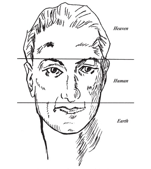 small resolution of chinese face reading diagram 2