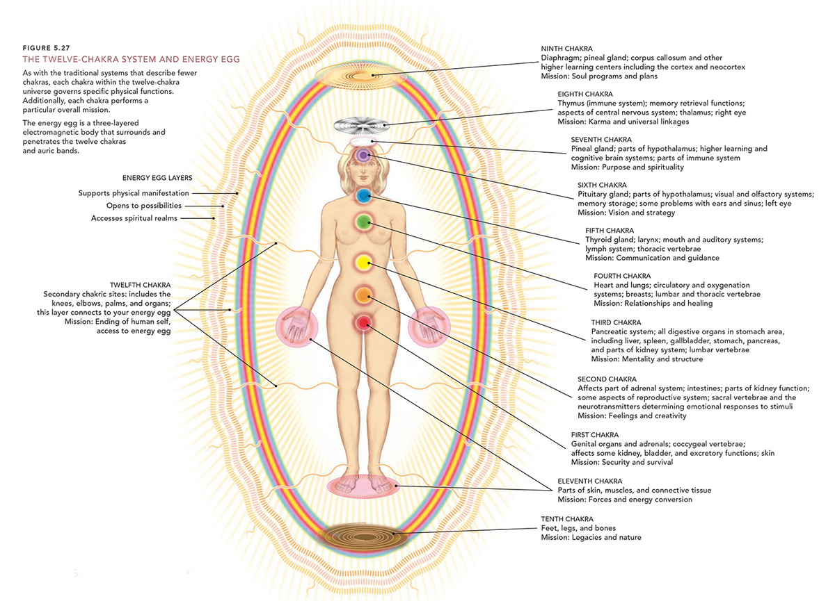 hight resolution of spiritual food and the chakras diagram