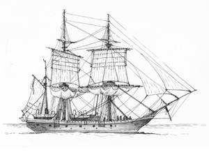 Darwins Beagle, het schip waarmee hij zijn zoektocht naar de oorsprong van alle levende wezens ondernam.