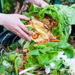 Conseils pour la Fabrication de compost