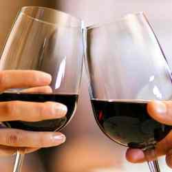 Apprendre le vin, tout savoir sur le vin