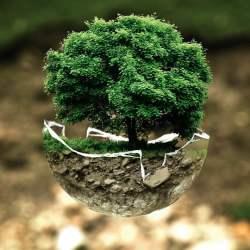 Sauver la planète avec des gestes simples