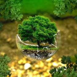 Astuce pour voyager de manière écologique