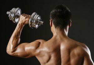 Programme musculation débutant