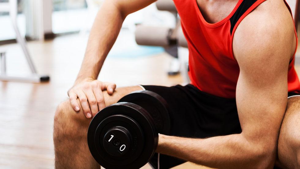 musculation débutant biceps
