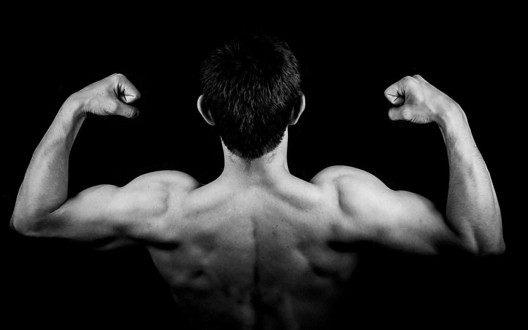 Prendre de la masse : comment gagner de la masse musculaire ?