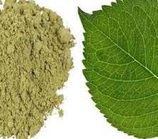 Kratom powder and leaf