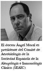 angel moral
