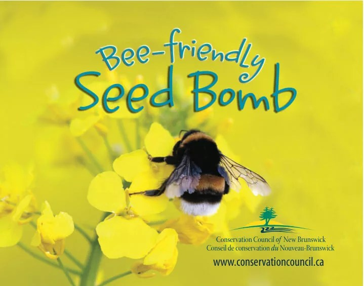 Plant a feast for our bees