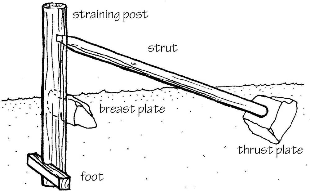 medium resolution of attach the struts on opposite side from strain