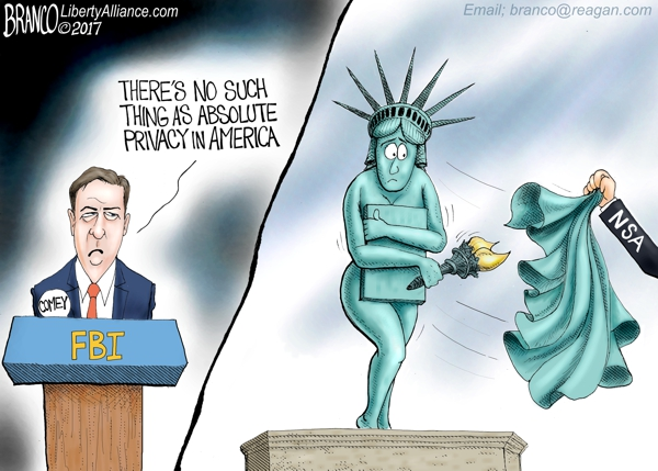 Image result for branco cartoons comey and rogers NSA FBI