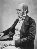 Charles Darwin, father of modern evolution, source of two prime secular falsehoods in America today.