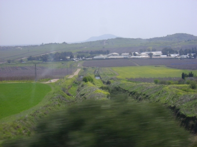 Farms in the Golan, planted after Israel retook it