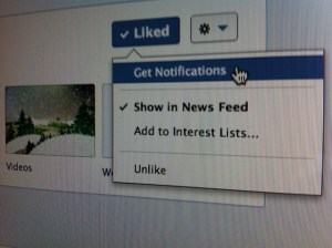 A Facebook notification settings page. Are Facebook and other social media subversive? And in a conspiracy of censorship?