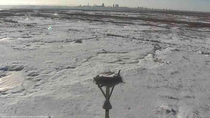 Looks like the arctic...