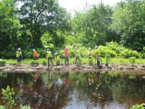 Atlantic City Electric and USFWS volunteers planting native shrubs (c) Wayne Russell