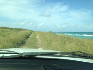On the road to nowhere - locating piping plover sites on Eleuthera was a logistic challenge at times.