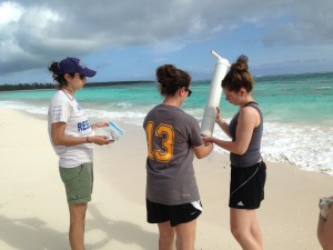 Students collecting and processing the sediment samples as part of research to assess foraging quality.