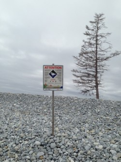Post and sign designating a piping plover breeding sites in Canada.