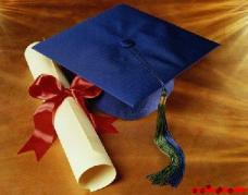diploma laurea