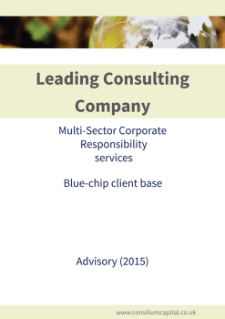 Leading Consulting Company Multi Sector Corporate Responsibility Services