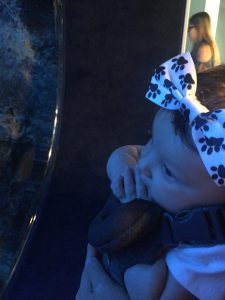 Baby Outings in Cincinnati, OH