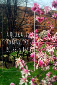 A Quick Guide to Kentucky's Bourbon Trail