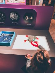 Boonshoft Museum of Discovery: A Dayton Family Favorite