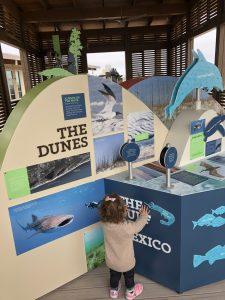 Budget-friendly Gulf Shores