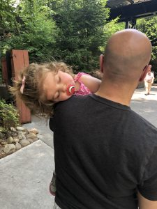 Tips For Dollywood with small kids