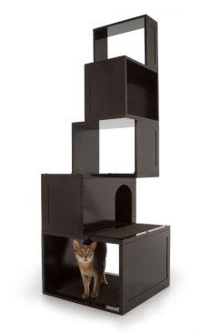 arbre a chat contemporain