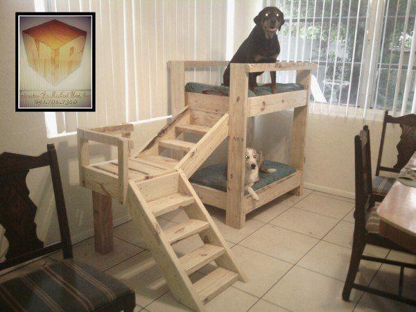 double niche en palette pour chien