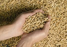 des granulés pour chaudière à bois écologique