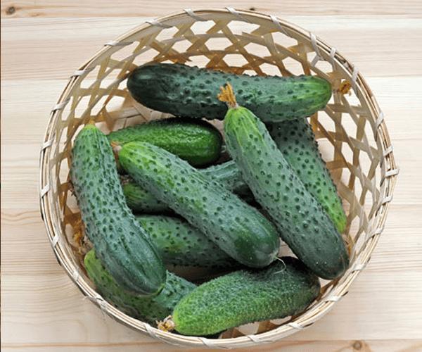 Cucumber Box