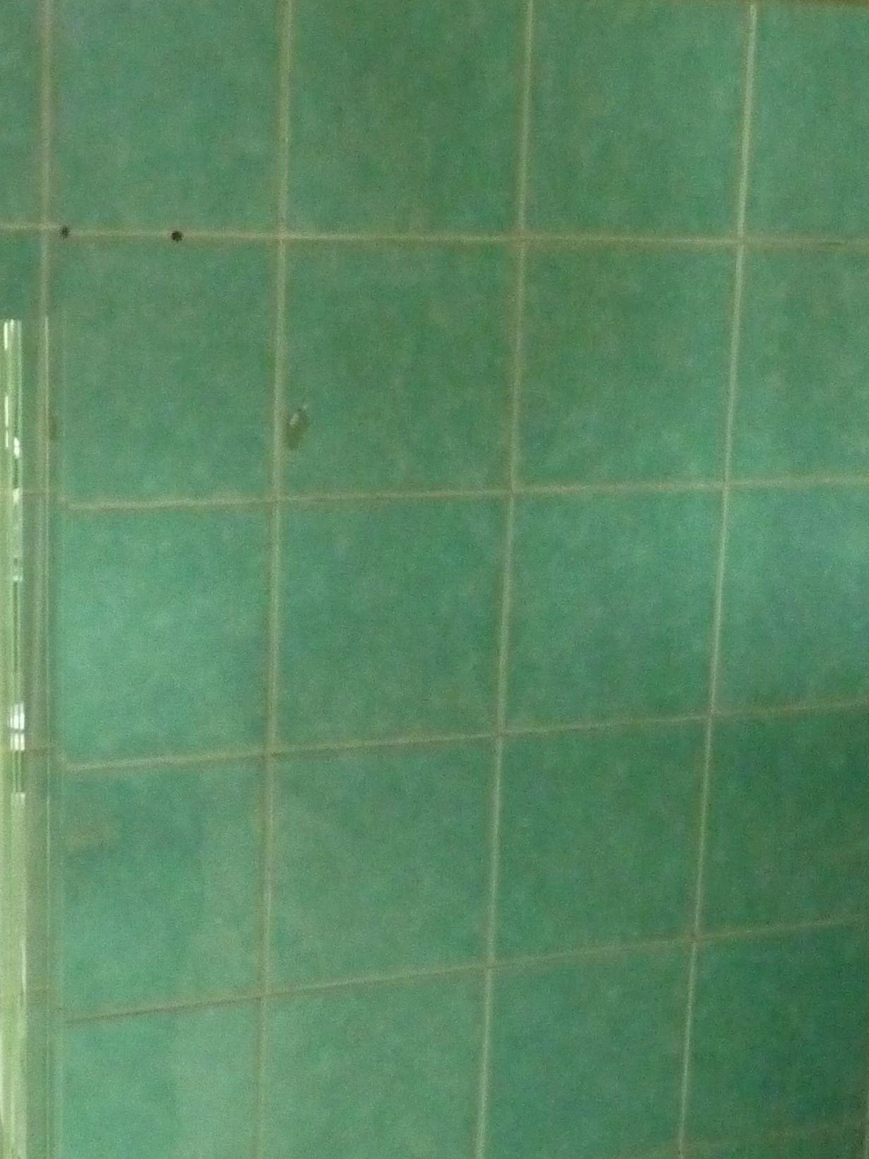 Comment Utiliser Le Vinaigre Blanc Dans Sa Salle De Bain