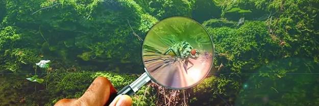 mesurer-le-ph-du-sol-jardin-bio-jardinage-00-ban