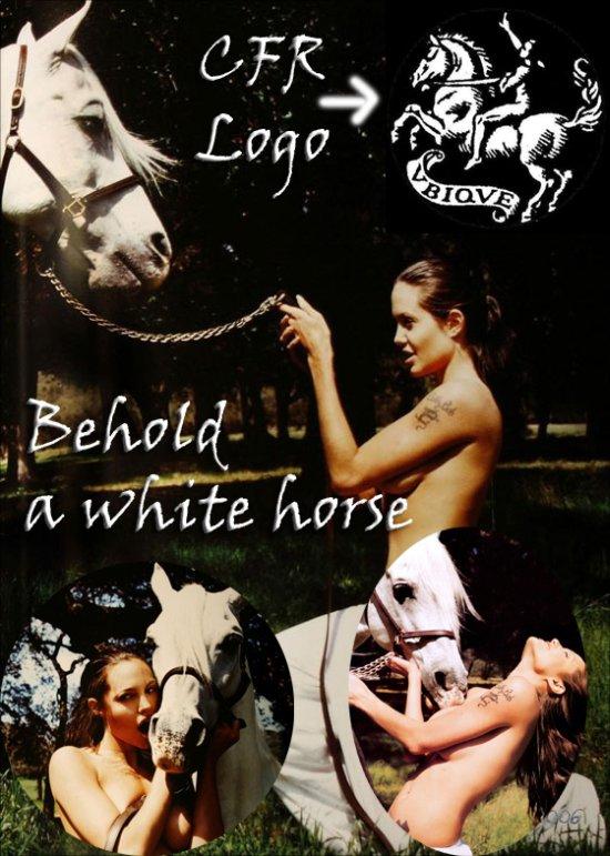 Angelina Jolie Cavalo CFR