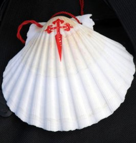 The conch - symbol of the camino