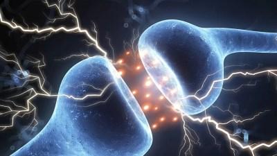 Предупредителните сигнали на организма ни, които обикновено не разбираме
