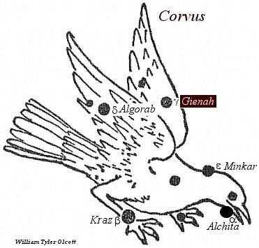 Gienah (Crv)