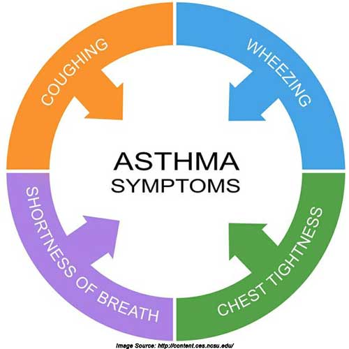 Asthma and Asthma Attacks: Learning to Deal with Your Asthma!