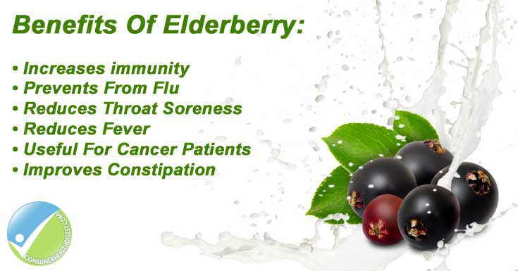 Elderberry: Benefits Side Effects Interactions And More