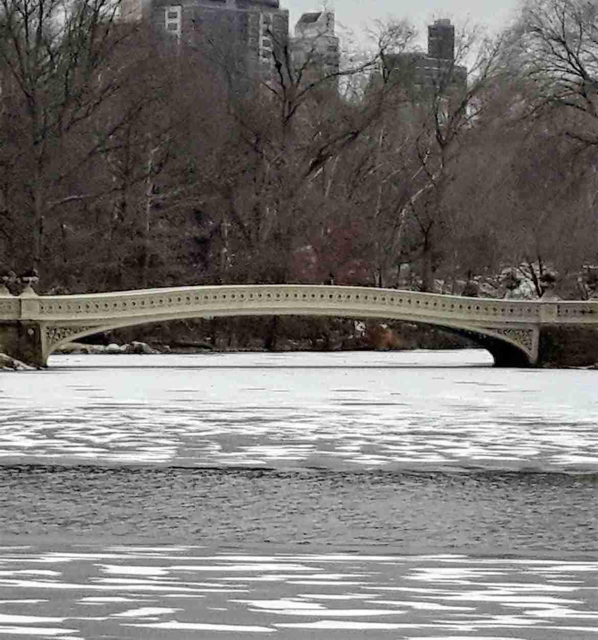 Bow Bridge en invierno