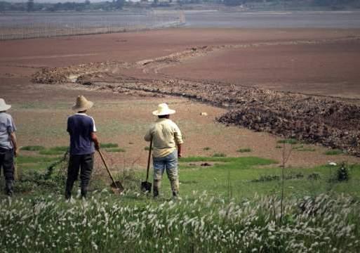 Censo agrario evidencia que aumenta la concentración de la tierra en Colombia