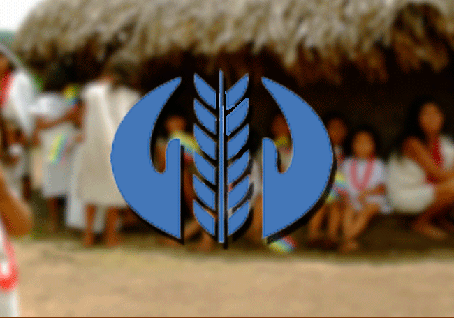 """""""Diakonia"""" solidaridad con las causas de DDHH y la paz en Latinoamérica"""