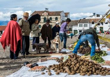 Seguridad Alimentaria, la tarea pendiente en Colombia