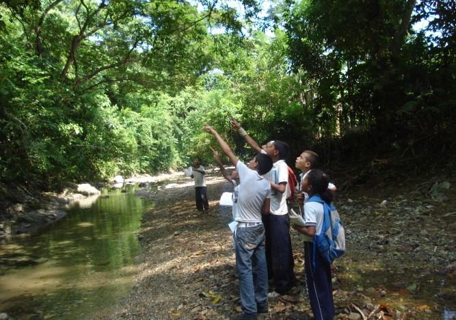 Educación ambiental: el reto de Colombia para 2017