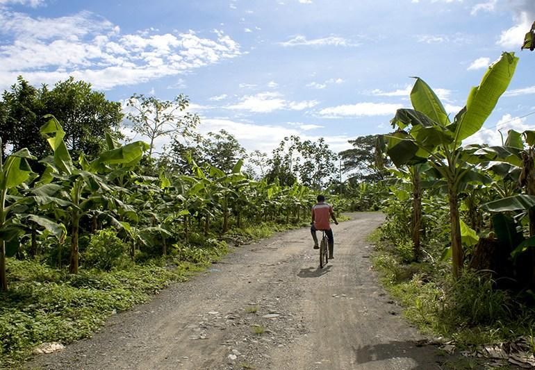 Octubre, fecha crucial para la restitución de tierras