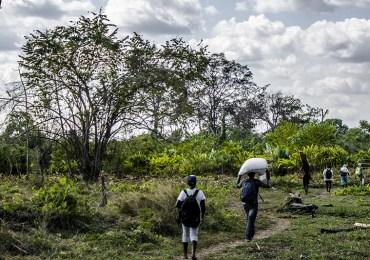 Cerca de 600 indígenas y campesinos fueron desplazados en Córdoba: ONU