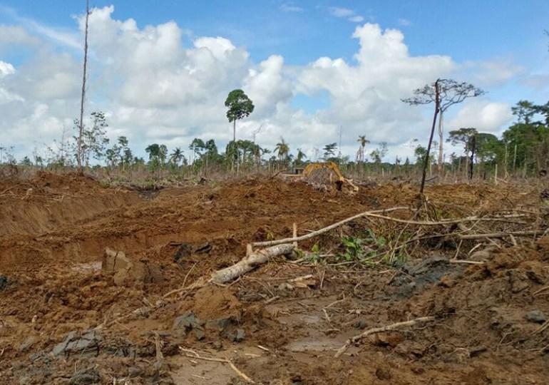 Empresa Agromar provoca desastre ambiental en Chocó